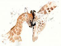 Giraffenliebe