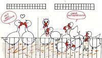 Vida en una granja avícola