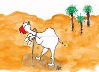 Que un camell...